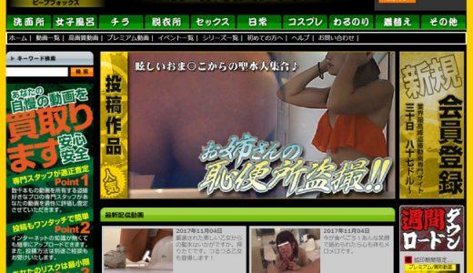 【閉鎖→復旧※要注意】PEEPFOX(盗撮狐)のサイト概要